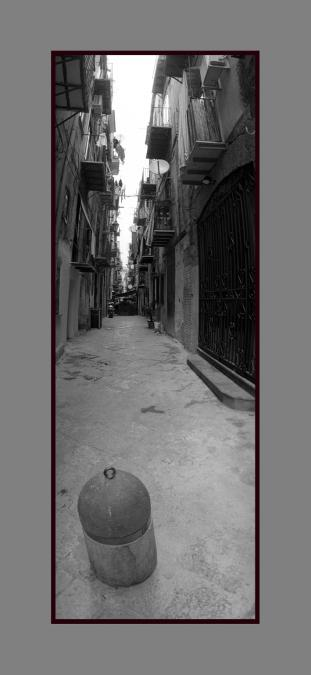 Palermo 1481-9